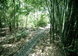 Cau Ke Tra Vinh 2-day tour Code: SS2.1-NT
